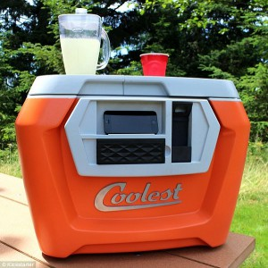 The perfect cooler for any beer league hockey player.